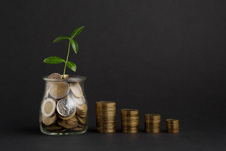 Finanzielle Unterstützung durch die ISB