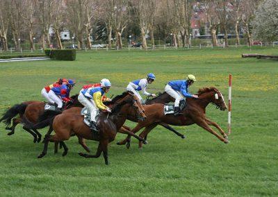Pferderennen Zweibrücken