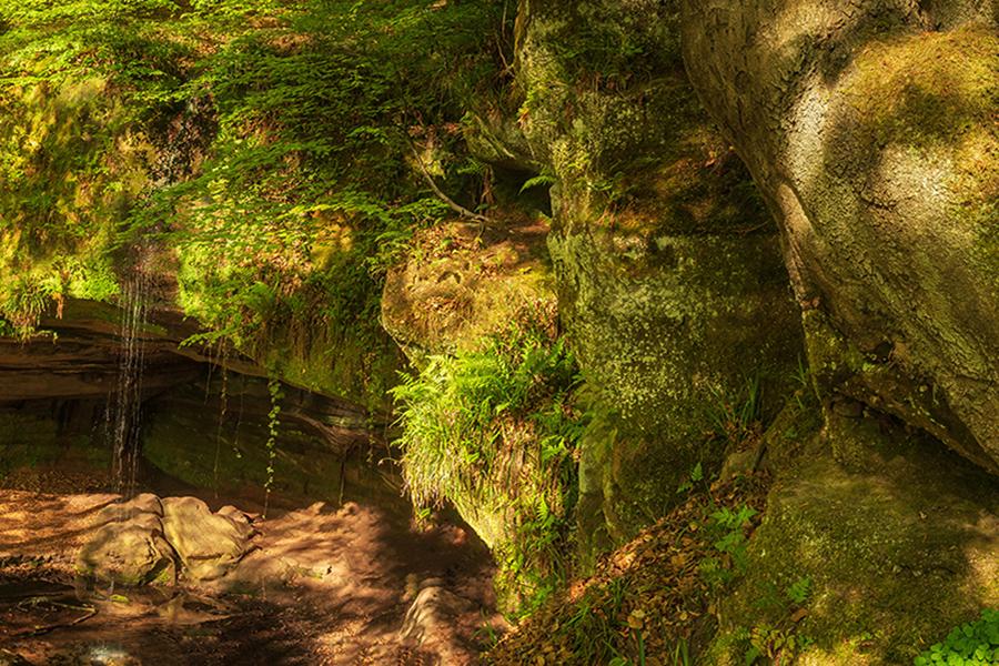 Felsenwanderweg Rodalben