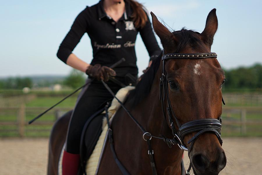 Riding facilities & training