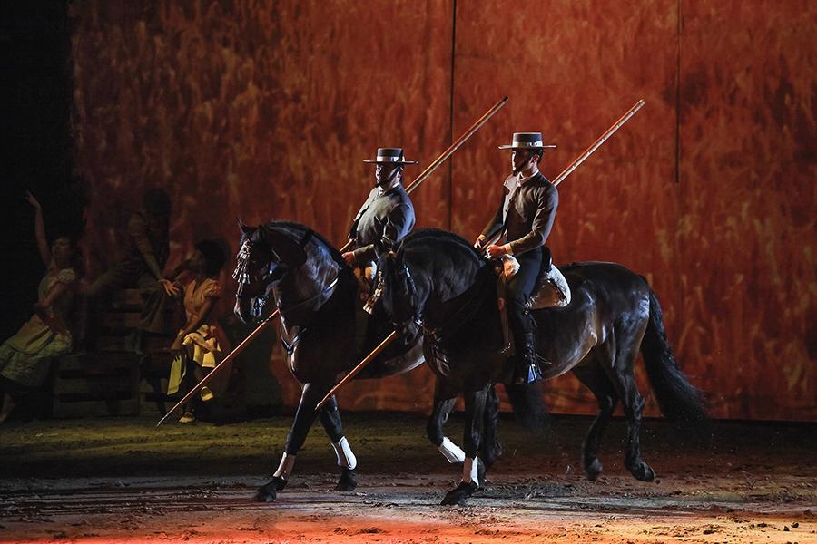 Pferdeveranstaltungen & Messen